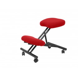 Silla de oficina ergonómica Modelo RODA